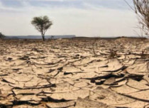 South African Government warns of El Niño drought in 2017