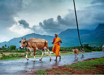 What does Monsoon 2017 hold in store for India