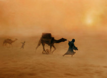 rajasthan dust storm feature