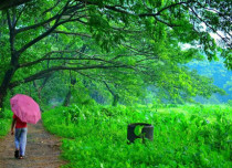 Featured - Kerala