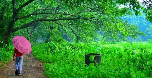 Inside - Kerala
