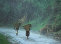Cyclone Mora brings Southwest Monsoon over Northeast India
