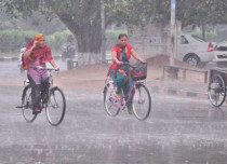 Punjab haryana rain_Hindustan Times 600