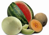 melonszz