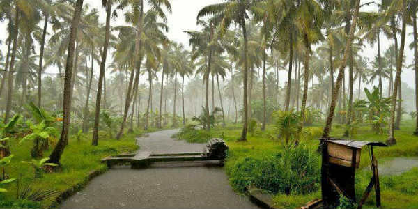 climate of kerala Weather in kerala -indianholiday infers online information on the weather in kerala climate of kerala changes to some extent with the season and thus, it is essential to know the weather of kerala while choosing the best time to visit kerala.