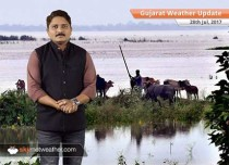Gujarat Weather Update 28 July: Flood furry will continue in Gujarat as heavy rains to persist