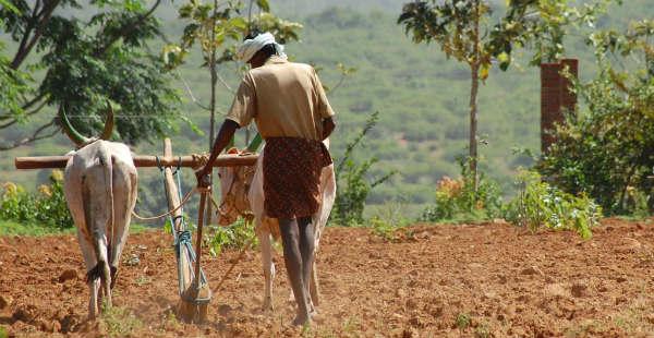 [Hindi] मराठवाड़ा में सामान्य से अधिक बारिश; फिर भी किसान परेशानJuly 5, 2017महाराष्ट्र के मराठवाड़ा क्षेत्र में खरीफ की लगभग 84 प्रतिशत खेती मॉनसून पर न...
