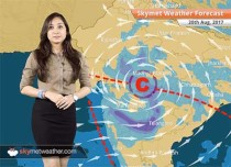 Weather Forecast for Aug 20: Rains in Delhi, Rajasthan, Uttar Pradesh, Himachal Pradesh