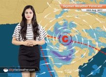 Weather Forecast for August 20: Rain is likely over Madhya Pradesh, Uttar Pradesh, Delhi, Rajasthan