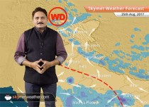 Weather Forecast for August 25: Rain in Uttar Pradesh, Madhya Pradesh, Jharkhand, Odisha