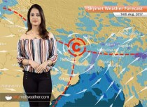 Weather Forecast for Aug 14: Rain in UP, Bihar, Assam, West Bengal