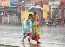 mp rains feature