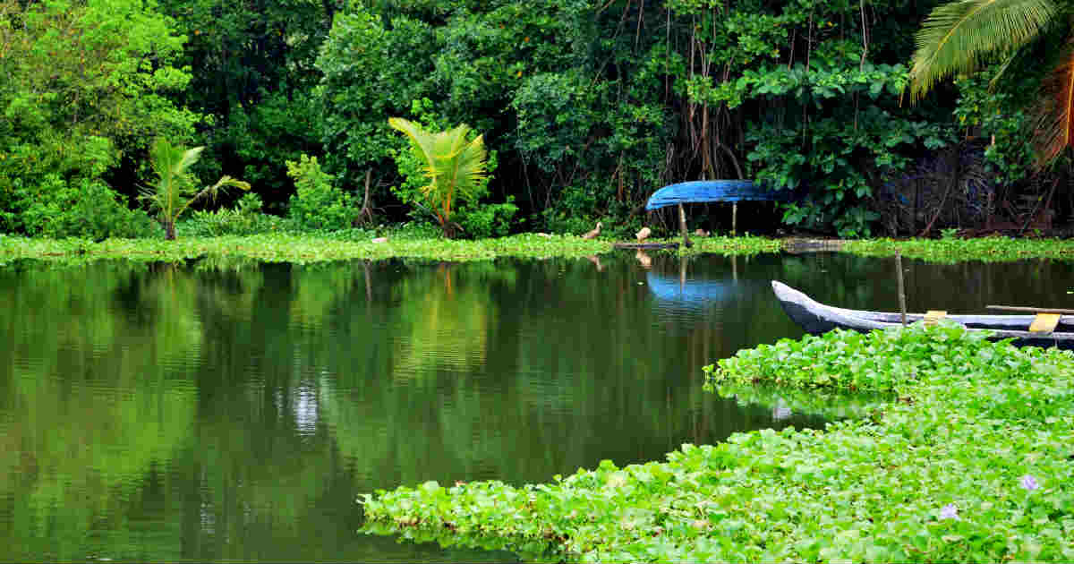Monsoon Rains To Decrease In Kerala Pleasant Weather To