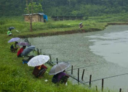 Moderate to heavy rains to continue in Assam, Meghalaya