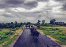 chhattisgarh feature