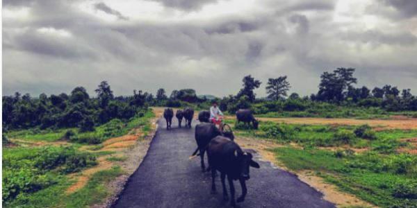 chhattisgarh post