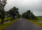 Karnataka feature