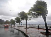 Typhoon in Vietnam feature