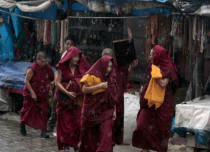 At 84 mm, Dharamsala surpasses monthly rain average in 24 hours