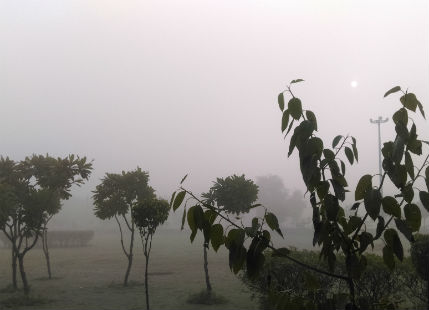 Fog in Punjab Fog in Haryana Smog in Delhi