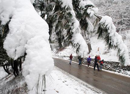 Gulmarg-Snowfall-
