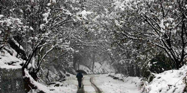 Cold wave continue in North India; Heavy rain, snowfall in J&K, Himachal