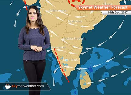 Weather Forecast for Dec 14: Rain, snow in Kashmir, Himachal, Dense fog in Punjab, Haryana, Rajasthan