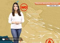 Weather Forecast for Dec 16: Fog in Punjab, Haryana, Rajasthan, UP, Delhi pollution to remain on lower side
