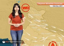Weather Forecast for Dec 16: Chilly weather in Delhi, Punjab, Haryana, Fog in North India