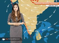 Weather Forecast for Dec 14: Fog in Delhi, Punjab, Haryana, Rajasthan, Snow in Himachal, Kashmir