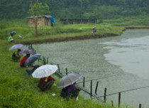 Rains to continue over Assam, Tripura, Manipur, Mizoram, Nagaland