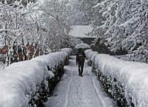 SRinagar Shimla