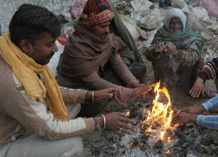 Cold days in Madhya Pradesh_Scroll 429