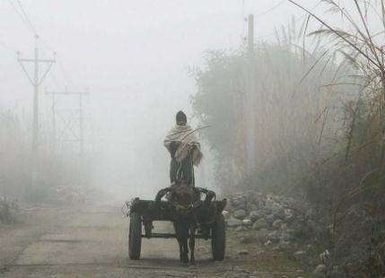 Dense fog to persist over Punjab, Haryana, Delhi, UP, Bihar