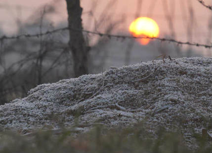 Ground frost in Haryanaa and Rajasthan