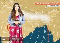 Weather Forecast for Jan 20: Dense fog in Bihar, East Uttar Pradesh, temperatures to drop in Madhya Pradesh, Vidarbha