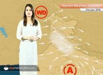 Weather Forecast for Jan 21: Dense fog in Gorakhpur, Varanasi, Patna, Cold wave in Odisha