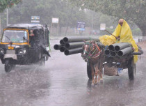 Rain in Punjab and haryana