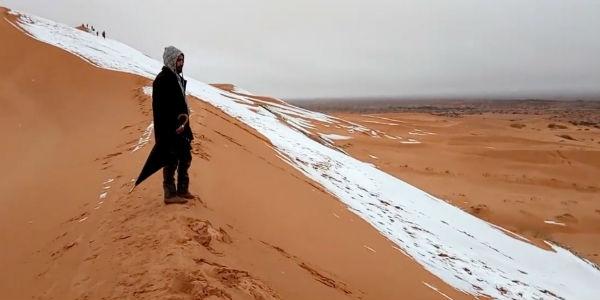 Sahara 5