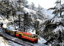 Snow-in-Shimla1