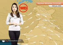 Weather Forecast for Jan 16: Warm days in Tamil Nadu, Kerala, Karnataka, Fog in Punjab, Haryana