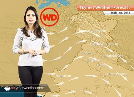 Weather Forecast for Jan 16: Warm days in Tamil Nadu, Kerala, Karnataka, Fog in Punjab, Haryana