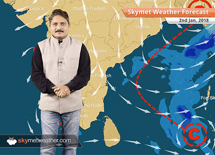Weather Forecast for Jan 2: Fog in Punjab, Haryana, Delhi, Cold day conditions in UP, Bihar