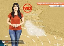 Weather Forecast for Jan 15: Fog in Punjab, Haryana, UP, Bihar, Rain in Kashmir, Himachal