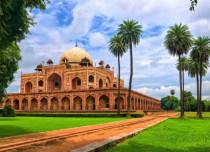 delhi ftr