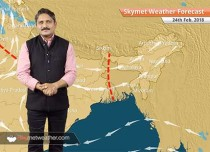 Weather Forecast for Feb 24: Rain in Delhi, UP, Punjab, Haryana, snow in Manali, Srinagar