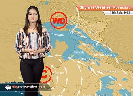 Weather Forecast for Feb 11: Rain, snow in Kashmir, Himachal, Rain in Delhi, Chandigarh, Lucknow, Jaipur