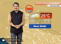 Weather Forecast for Feb 16: Maximums to rise in Punjab, Haryana, Rajasthan, Gujarat