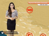 Weather Forecast for Feb 18: Weather to remain dry in Delhi, Punjab, Haryana, Rajasthan, Uttar Pradesh