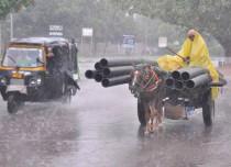 Rain in Punjab, haryana, rajasthan